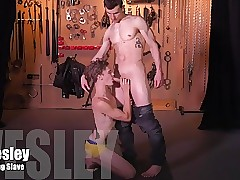 DreamBoy SUMMER DVD BDSM Gay Bondage COLLECTION